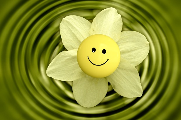 smiley blume