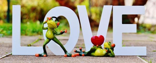 liebes frosch